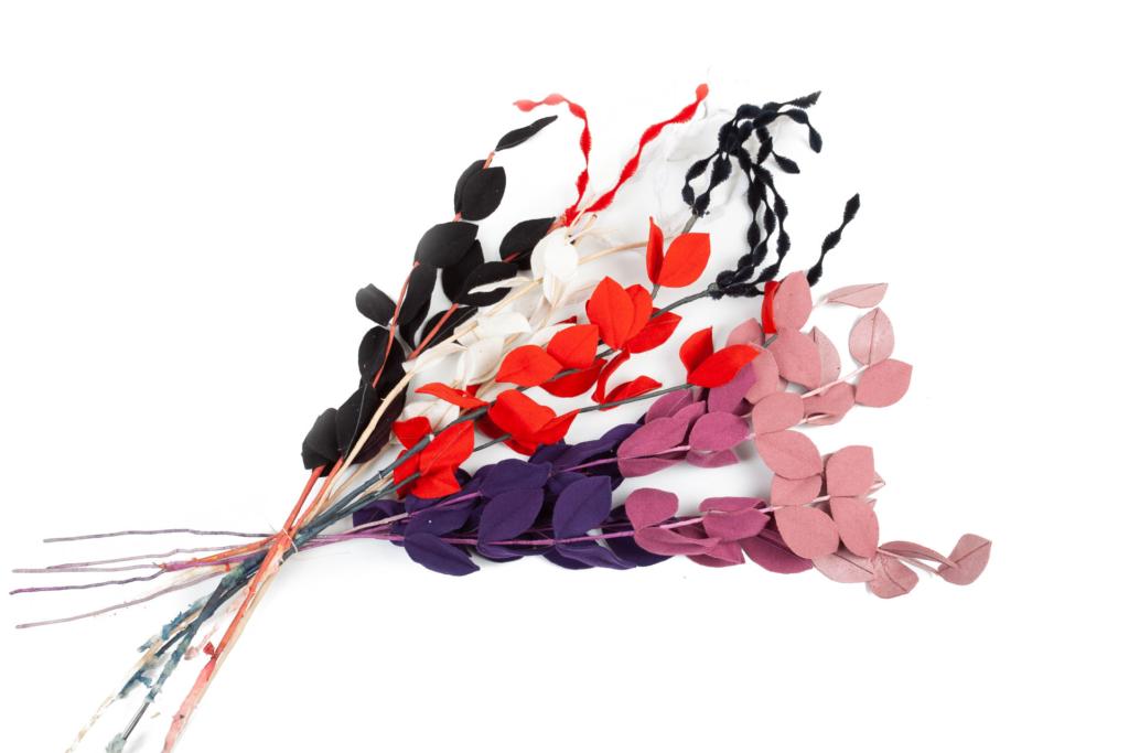Hierbas de varias colores
